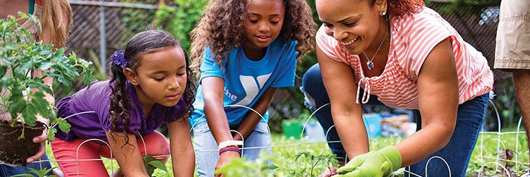 Chandler/Gilbert Family YMCA   Valley of the Sun YMCA   Family Events
