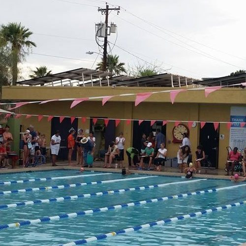 Chris-Town Flying Sharks Swim Team | Teens Swim | Programs & Activities | Valley of the Sun YMCA